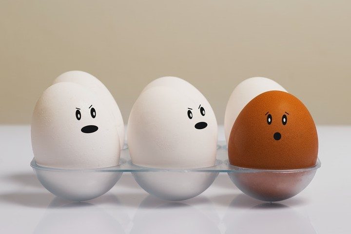 Olu trauks ar sešām olām. Piecas olas ir baltā krāsā, bet viena - brūna. Priekšplānā ir divas baltas olas un brūnā ola. Baltajām ir uzzīmētas nosodošas sejas, brūnajai - neizpratnes pilna seja.